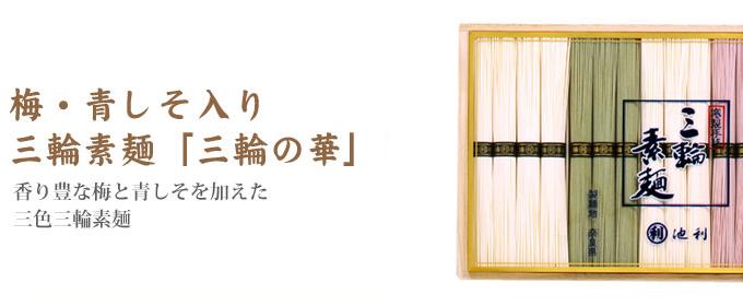 梅・青しそ入り三輪素麺「三輪の華」